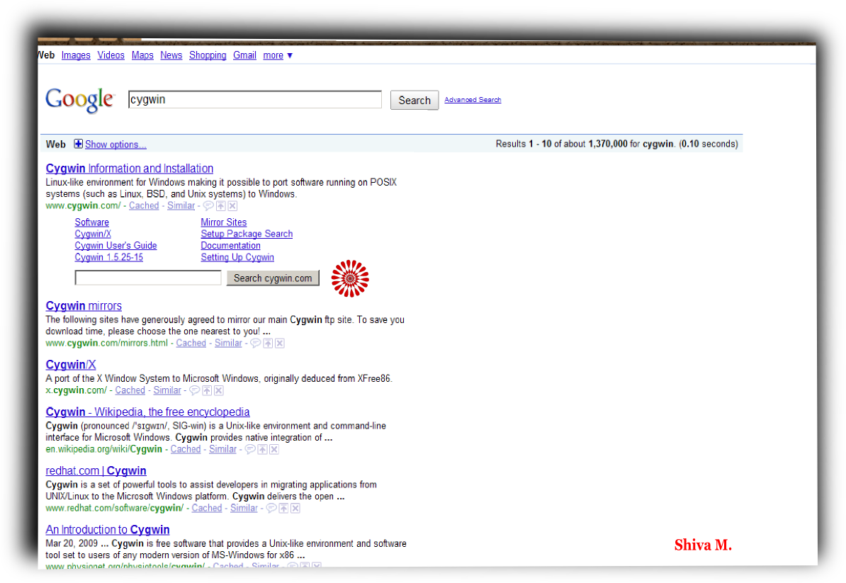 Google NS Individual Search Box – Data, Cloud, Software